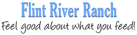 Flint River Logo
